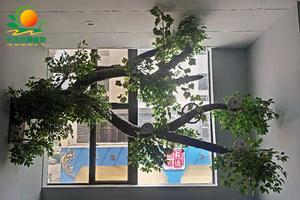 明阳茶叶城室内造型树