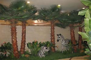 动物园装饰棕榈树