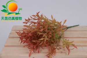 室外阻燃墙上小植物002—14
