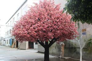 6米高仿真樱花树