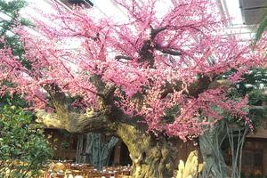 仿真古桃花树