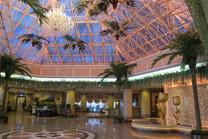 酒店室内装饰椰子树