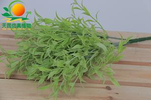 室外阻燃墙上小植物002—11