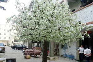 玻璃钢杆樱花树