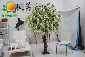 造型豆花树