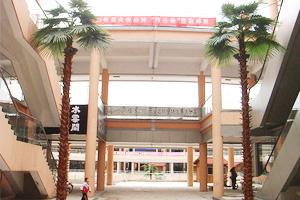 广场装饰仿真棕榈树